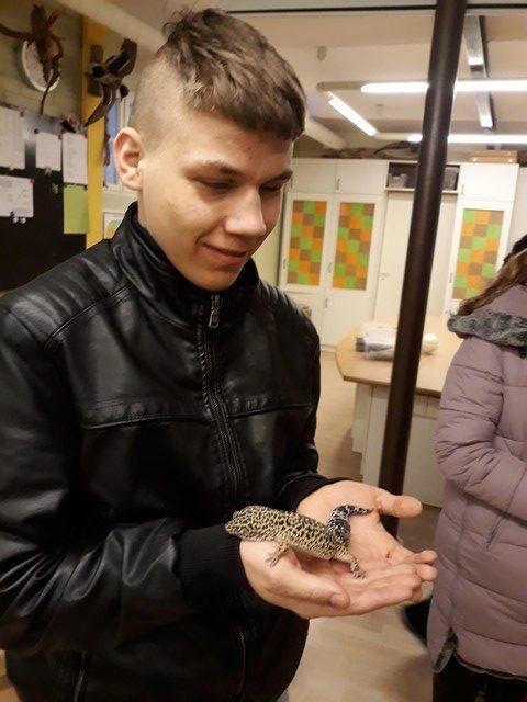 Deniss tur rokās gekonu